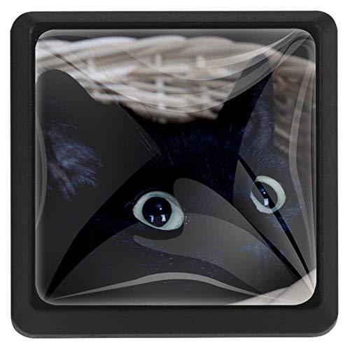 Cat Yawning vierkante lade knoppen trekken handgrepen 3 Pack gebruikt voor keuken, dressoir, deur, kast Modern design 37x25x17mm/1.45x0.98x0.66in Zwarte kat in mand