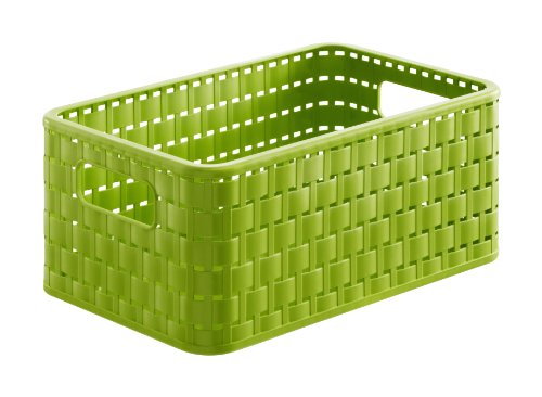 Rotho Country Aufbewahrungskiste 6l, Kunststoff (PP), grün, 6 Liter (28 x 18,5 x 12,6 cm)