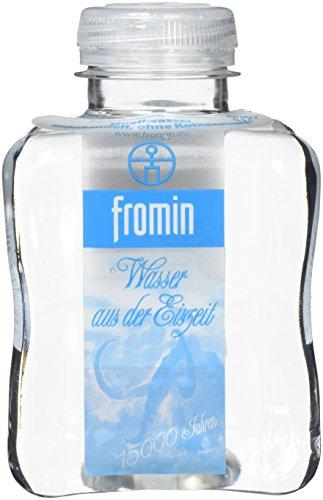 fromin Wasser still, Pet-Flaschen, Water from the Ice Age, 12er Pack, EINWEG (12 x 500 ml)