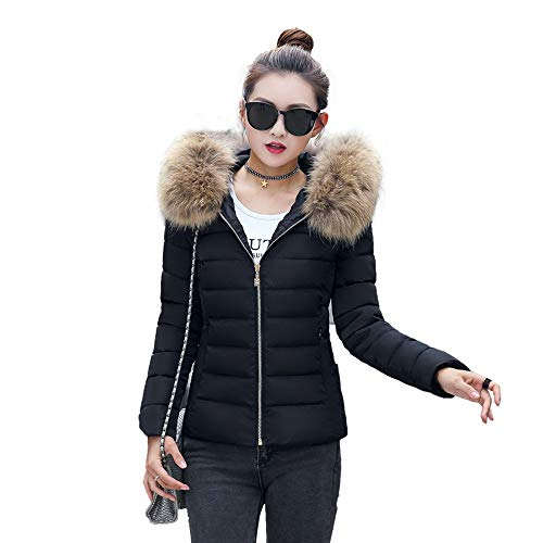 Writtian Winter Verdickt Wärmejacke Damen Warme Wintermantel Winddicht Pelzkragen Kapuze Jacken Steppjacke Casual Schlank Winterjacke Sportjacke Kurz abnehmbarem Fellkragen gesteppt Jacke