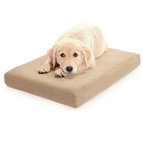 Milliard Memory Foam Dog Bed
