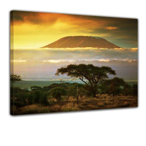 Wandbild - Kilimandscharo mit Savanne in Kenya - Afrika - Bild auf Leinwand - 70x50 cm 1 teilig - Leinwandbilder - Landschaften - Tansania - Nationalpark - Sonnenuntergang