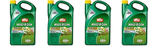 Ortho Weed B Gon Weed Killer for Lawns Concentrate, 1-Gallon (Pack of 4)