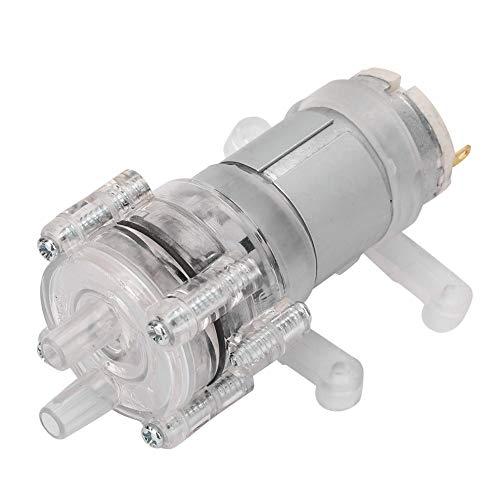 Membraan bestand tegen hoge temperaturen transparante dubbelmembraan luchtpomp aquarium mini membraan waterpomp DC12V