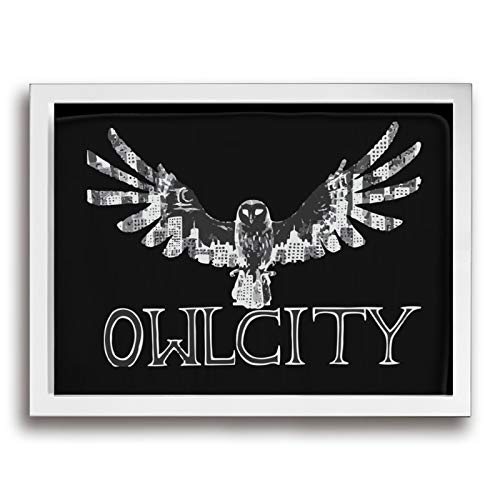 アウル・シティー Owl City フレームの絵 絵 家の壁の装飾画 壁掛け 家の装飾 インテリア 玄関 壁アート 枠付き 木製 お洒落 ギフト (サイズ30*40cm)