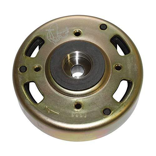 P2R (gemotoriseerd) Rotor ontsteking Scooter aanpasbaar Peugeot 50 TKR, Trekker Buxy -P2R