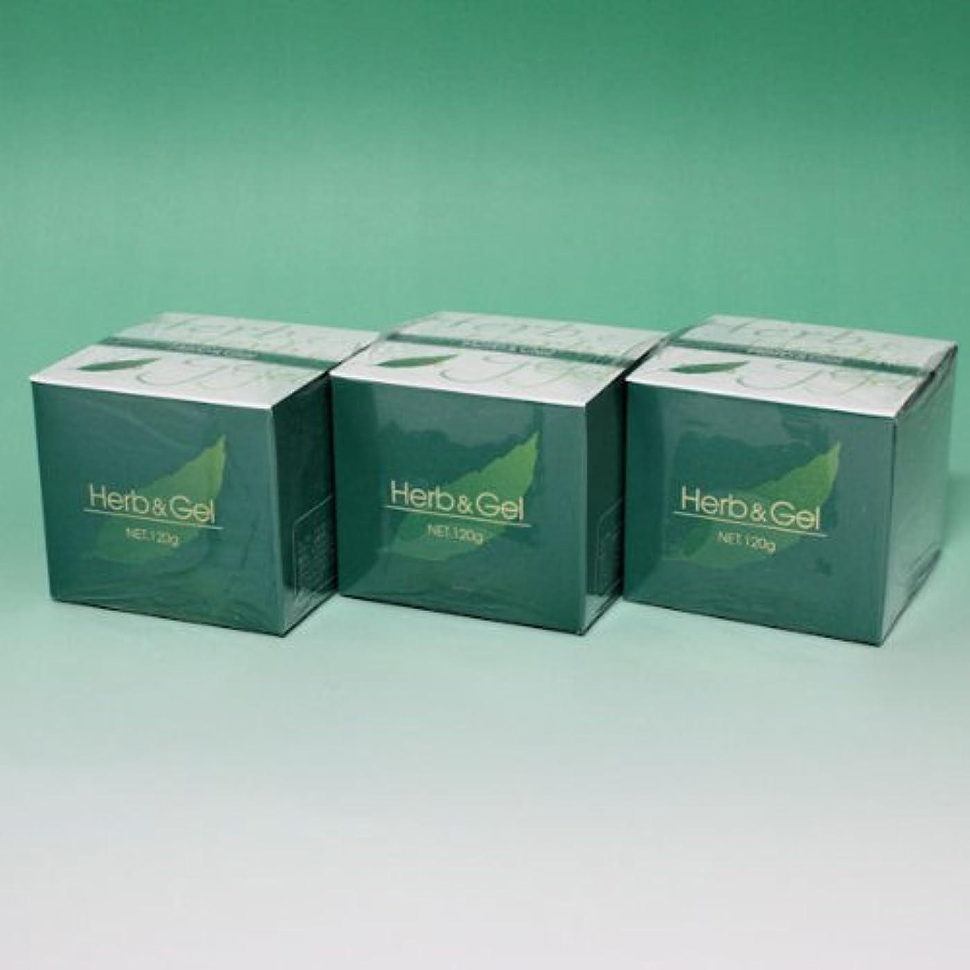 財産どこ彫刻ハーブアンドゲル 天然ハーブエキス配合 120g×3瓶セット (4580109490026)