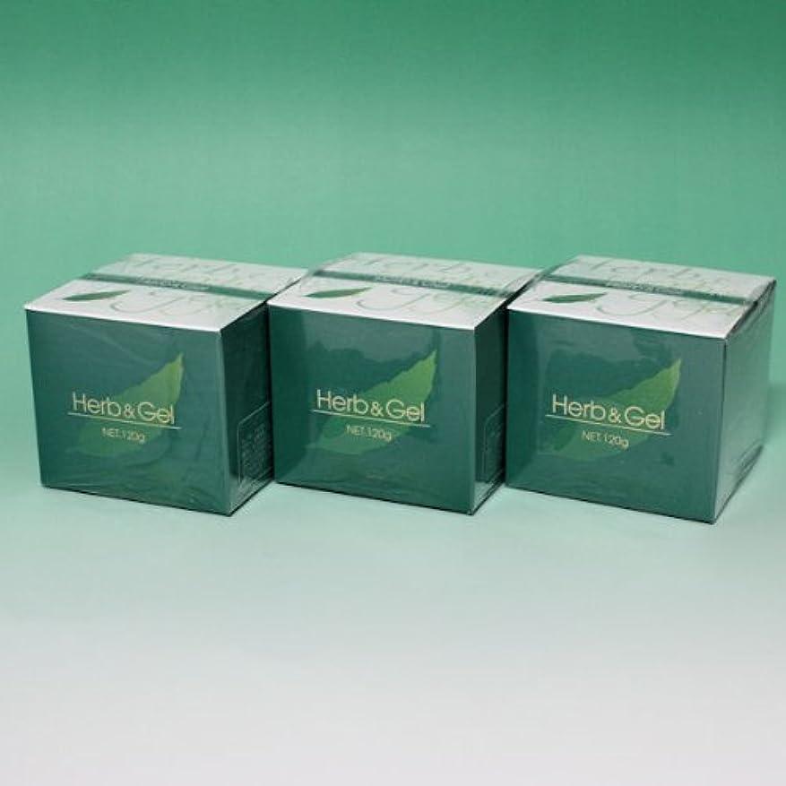 軽量矢印資本主義ハーブアンドゲル 天然ハーブエキス配合 120g×3瓶セット (4580109490026)