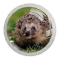 引き出しハンドルは丸いクリスタルガラスを引っ張る キャビネットノブキッチンキャビネットハンドル,動物