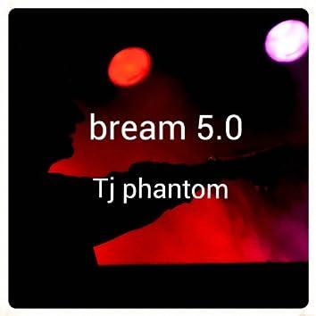 Bream 5.0