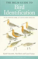 The Helm Guide to Bird Identification: An In-depth Look at Confusion Species