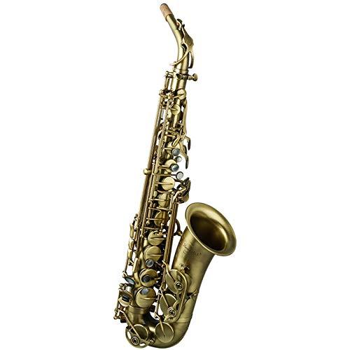 DUTUI Strumento A Fiato per Principianti Sassofono Contralto retrò, Sassofono Sassofono Contralto Mi Bemolle Principiante Bambino Sassofono Generale