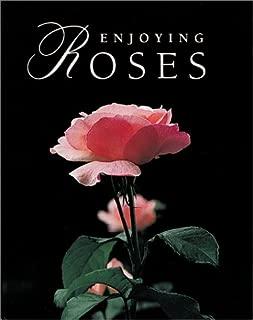 Enjoying Roses