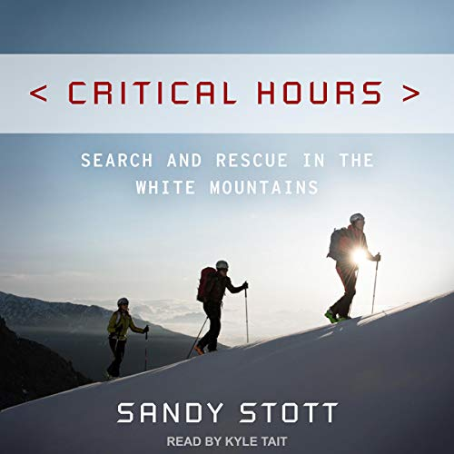 Critical Hours Audiobook By Sandy Stott cover art