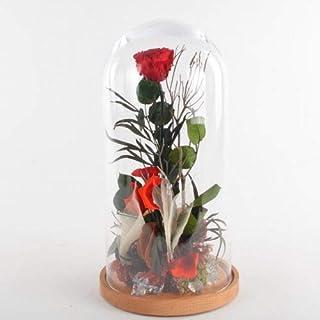 Collezione fiabe | La rosa Incantata eterna | Big