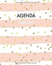Agenda 2018-2019: Perfecto para anotar tus citas del día,  semana vista, motif rayas rosadas con puntos, 20 x 25cm (Octubre2018 - diciembre 2019) (Spanish Edition)