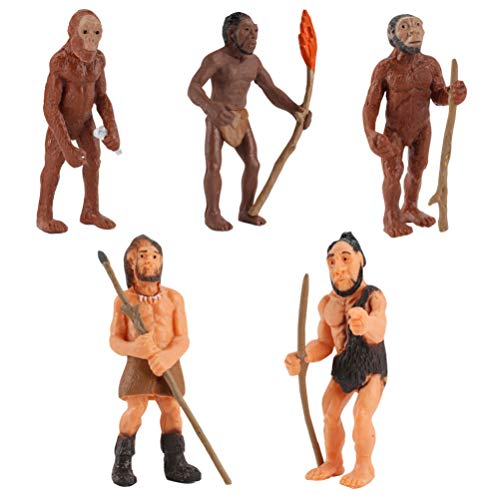 NUOBESTY Emulación Modelos Humanos Primitivos Modelo de Evolución Humana Cavernícola Figura de Acción Juguetes-5 Piezas