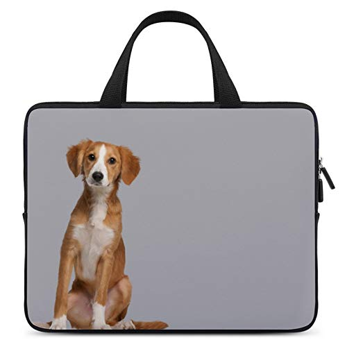 Universal Laptop Computer Tablet,Case,Cover for Apple/MacBook/HP/Acer/Asus/Dell/Lenovo/Samsung,Laptop Sleeve,Color for Dog Breed English Foxhound Companion Dog,15inch