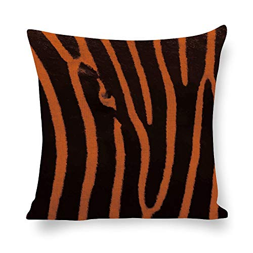 N/ A Animal Skins - Funda de cojín decorativa de lino, diseño de cebra con patrón de textura negro y rojo, 45,7 x 45,7 cm, para sofá lp9gr35qqzsw