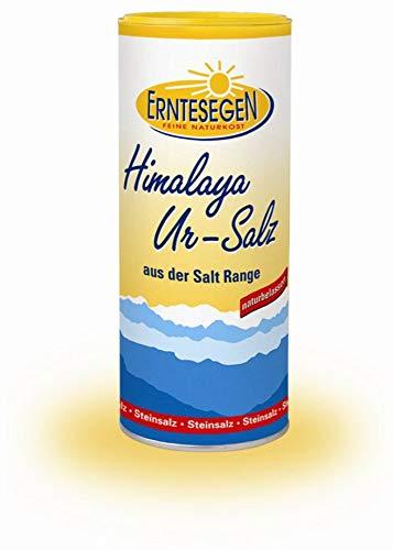 Erntesegen Himalaya Ur-Salz, feinkörnig (1 x 400 gr)