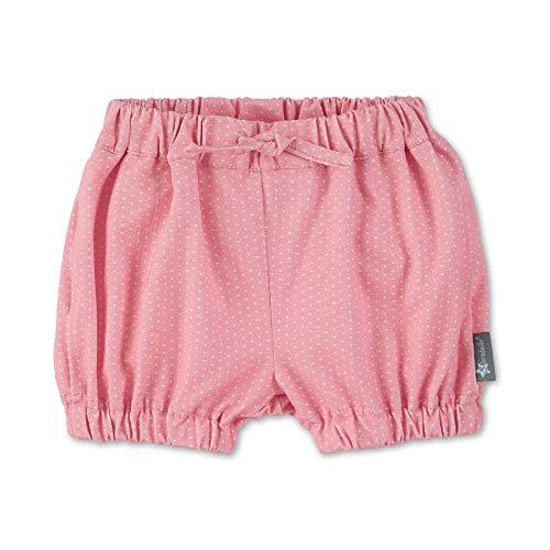 Sterntaler Baby-Mädchen Hose Kurz Shorts, Rot (Hellrot 814), 6-9 Monate (Herstellergröße: 74)