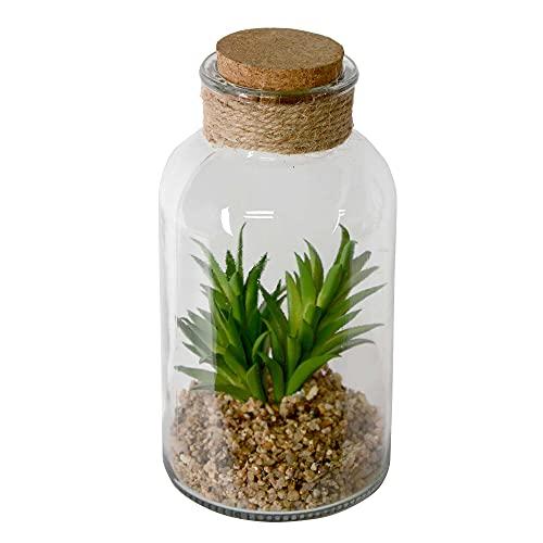 UNUS Planta artificial suculenta en jarrón de cristal con tapa de corcho...