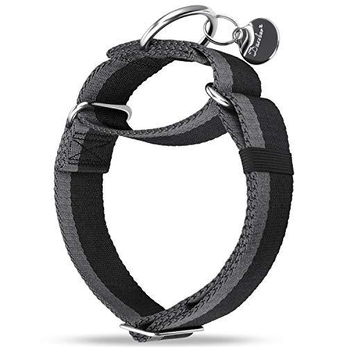 Dazzber Martingala Collar -4cm de Ancho Collares de Perro de Nylon Extra Fuerte, sin tirón Collar de Perro Resistente con Raya de 2 Colores para Perros de medianos a Grandes (Grande, Negro & Gris)