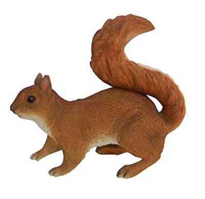 Vivid Arts Size-A Real Life Squirrel - Red
