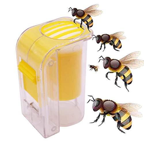 yyuezhi Bienenkönigin Flasche Kunststoff Königinnenzucht Markieren Flasche Bienen Königin Imkereiausrüstung Zubehör 1 Stück EIN ausgezeichnetes Gerät zum Fangen und Markieren von Bienenköniginnen
