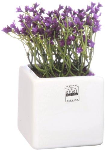 ASA - Campanule artificielle - Violet - Pot 8x8 cm