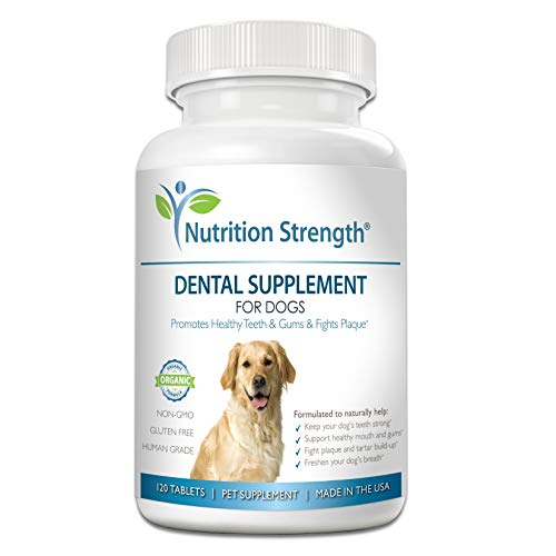 Top 10 best selling list for gum supplement for dogs