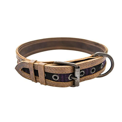 Hide & Drink, Rustic Mayan Dog Collar Handmade :: Tropical Purple