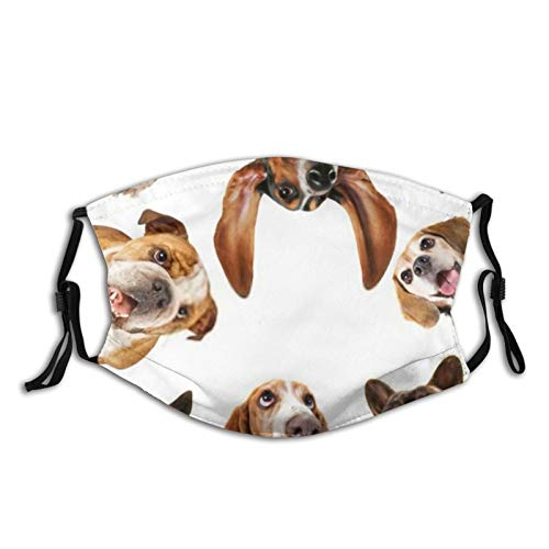 yanfind Dog Selfie Pet Photo Best Mutt Beagle Instagram Basset Camera Hound Licking Dust Washable Reusable Filter and Reusable Mouth Warm Windproof Cotton Face