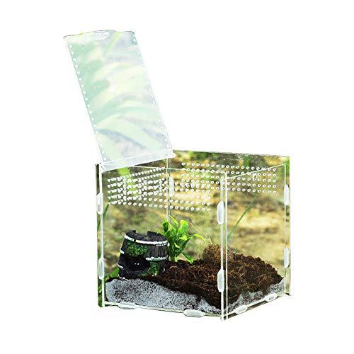 DZAY Acryl-fütterungsbox,Transparente Fütterungsbox Reptilienzuchtbecken Terrarium Transportbox Fütterungsbox 360 Grad Hochtransparentes Terrarium Insekten Fütterung Zucht Box Für Spide, Eidechse (M)
