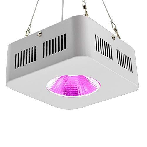 Beste LED-Zuchtlampe, 200 W wasserdicht, 1 COB LED-Zuchtlampe, ultradünn und leicht, für Zimmerpflanzen in allen Wachstumsstadien