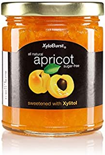 Xyloburst Sugar Free Apricot Xylitol Jam Keto Friendly & Gluten Free, Non - GMO 10 OZ Glass Jar - Made In the USA