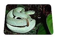 26cmx21cm マウスパッド (蛇の葉木登る) パターンカスタムの マウスパッド