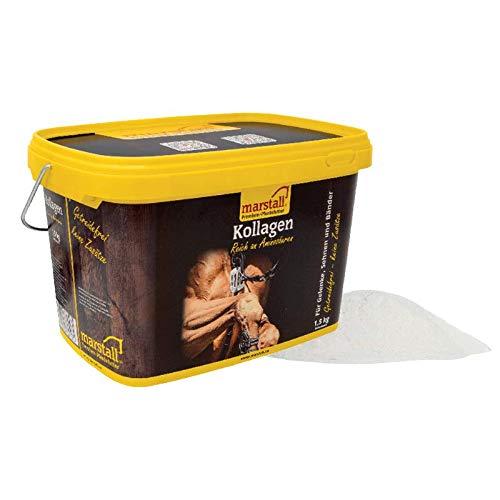 marstall Premium-Pferdefutter Kollagen, 1er Pack (1 x 1.5 kilograms)