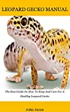 Leopard gecko: The Best Guide On...