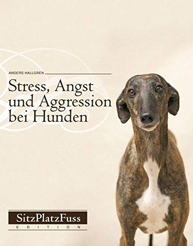 Stress, Angst und Aggression bei Hunden: Vorbeugen und abbauen