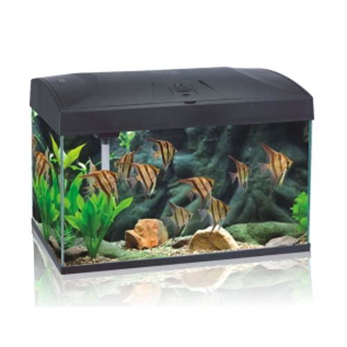 Aquarium Complete set 110 L, AA-Aquarium