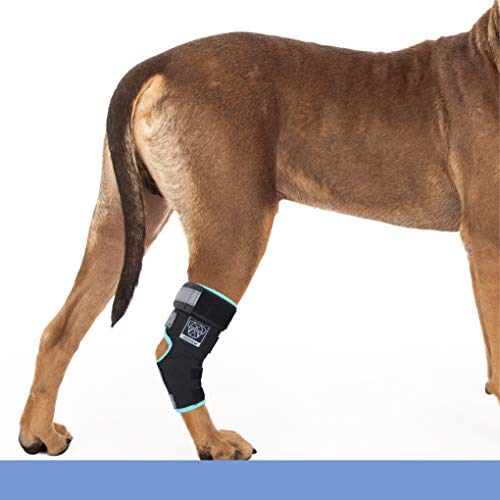 Joonem Dog Rear Leg Brace for The Hock Joint Canine Rear Leg Support for Injury or Sprain Relief and...