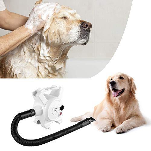 Pedy Dog Hair Dryer 3.2 HP