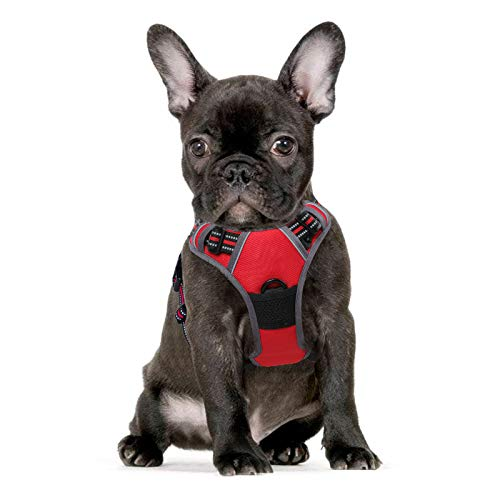 Eagloo Dog Harness No Pull, Walking Pet Harness with 2 Metal Rings and Handle Adjustable Reflective Breathable Oxford Soft Vest Easy Control Front Clip Harness Outdoor for Small Dogs Red