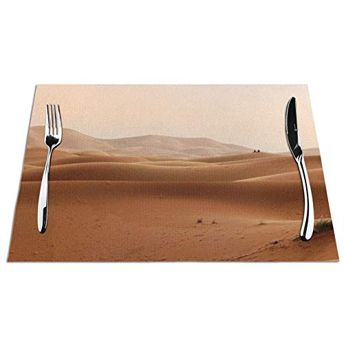 Jack16 Juego de 4 manteles individuales individuales de PVC tejido Desert Marruecos, dunas arenas, paisaje antideslizante, resistente al calor, lavable