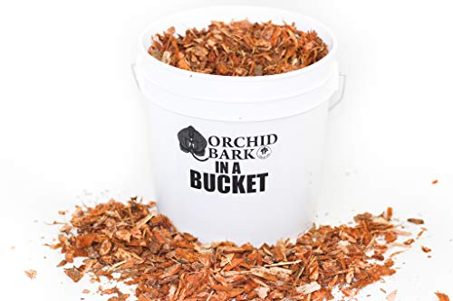 Orchid Bark in a Bucket - by TERRAFIRMA - 1 Gallon - Pure Douglas Fir Bark - Organic and All-Natural - Orchid Potting Soil Bark - Orchid Pot - Succulent Soil Top Dressing