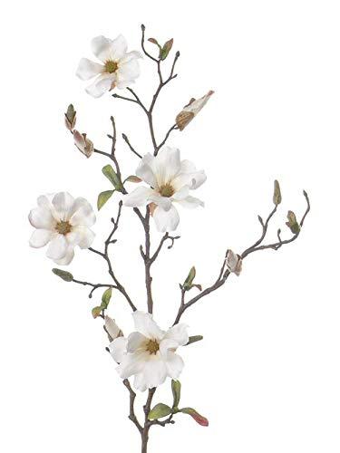 artplants.de Deko Magnolienzweig Marga mit 4 Blüten und Knospen, weiß, 50cm - Kunstzweig - Künstliche Magnolie