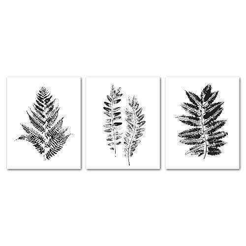 Gronda Black and White Fern Leaf Plants Wall Art Prints Poster for Living Room Bedroom Bathroom 8x10 Inch, 3 panels