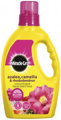 Miracle Gro Azalea, Camellia & Rhododendron Liquid Plant Food 1L (531660)