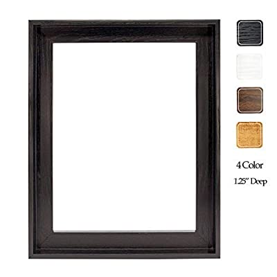 16x20 Inches Wooden Floater Frame for 1.25 Thick Canvas | 25+ Size and 4 Colors | Floating Frame for Canvas Artist Panel Oil Painting Wall Art Décor, Black | Hanging Hardware Included from Prixas Print